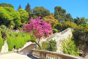 Floraison aux Jardins de la Fontaine
