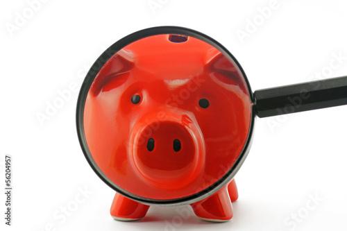 sparschwein mit lupe