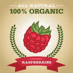 Organic Fruit Poster Design with Raspberry Icon
