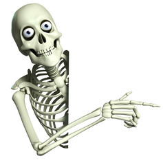 3d cartoon skeleton