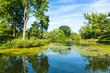 Leinwandbild Motiv Lush Green Woodland Park Reflecting in Tranquil Pond