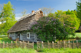 Polish cottage house in small village - 56209597