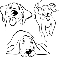 dog illustration - black line