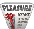 Pleasure Thermometer Measuring Enjoyment Comfort Ecstasty Level