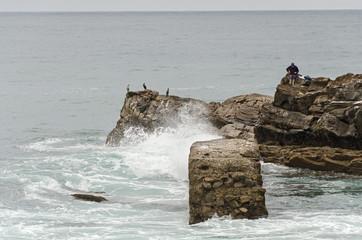 Fisherman and Cormorants