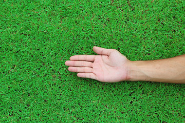Open hands. Holding, giving, showing concept on green grass