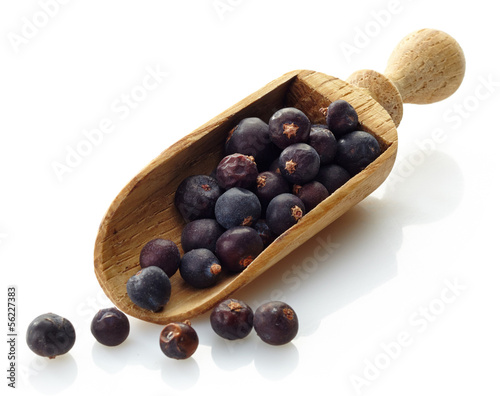 wooden scoop with dried juniper berries