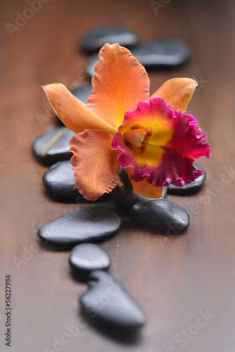 Pile of zen stones with orange orchid on wooden board