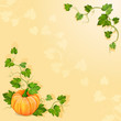 Illustration with orange pumpkin vegetable with green leaves