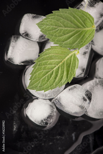 ice cubes, mint leaf on black
