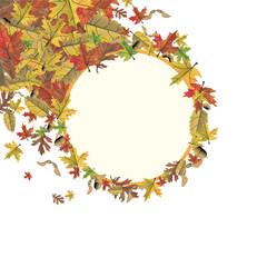 herbstlicher Hintergrund mit bunten Blättern