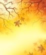 Autumn theme background 7