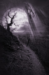 haunted pathway