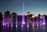 Fototapety The illuminated fountain at night