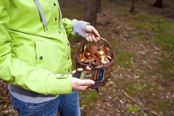 Women searching mushroom with phone, Mushrooming