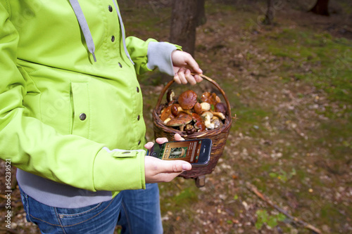Women searching mushroom with phone, Mushrooming