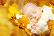 Autumn newborn baby sleeping in yellow leaves