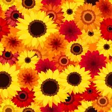 Seamless avec des fleurs d'automne colorées. Vector.