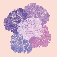 Bouquet of roses. Vector illustration.