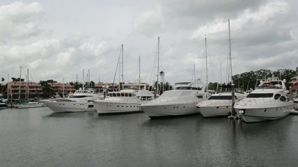 The yachts at the marina
