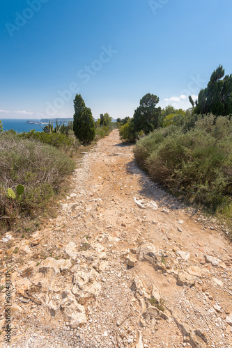 Stone footpath in the mountains leading to down Poster