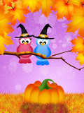 Birds of Halloween