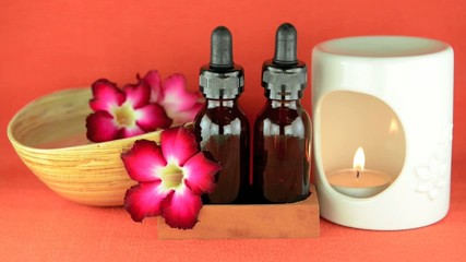 Aromatherapy burner with the scented oil