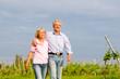 Seniors in summer walking hand in hand