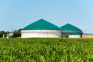 Biogas-Anlage mit Maisfeld 3096