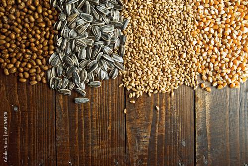 Fotobehang Granen Agricultural grains