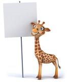 Fototapety Giraffe
