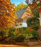 Fototapety Nice autumnal scene