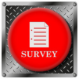 Survey metallic icon