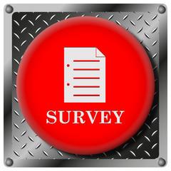 Survey metallic icon