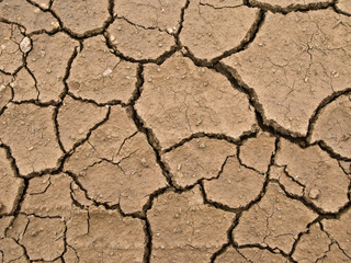 dried and cracked earth - global warming danger