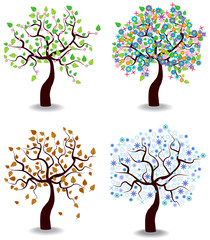 color vector illustration of four seasons trees