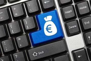 Conceptual keyboard - Bag of euros (blue key)