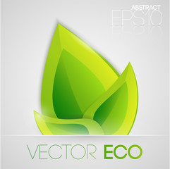 Vector eco leaves