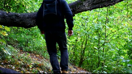 Hiker on forest trails episode 1