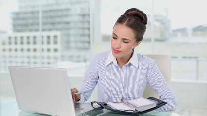 Young businesswoman planning with laptop and diary