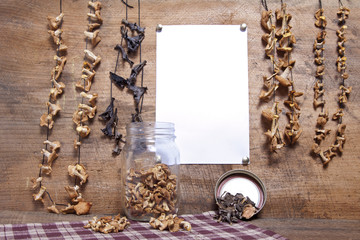 Wild Edible Mushroom Still Life