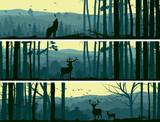 Fototapety Horizontal banners of wild animals in hills wood.