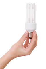 Hand holding compact fluorescent light bulb isolated on white