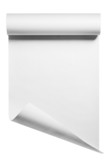 Roll of blank white paper ready for type, isolated