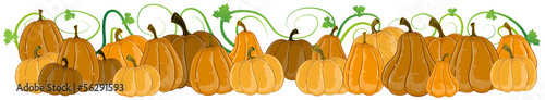 Pumpkins with sprouts and leaves