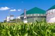 Leinwanddruck Bild - Biogasanlage mit Maisfeld 3137