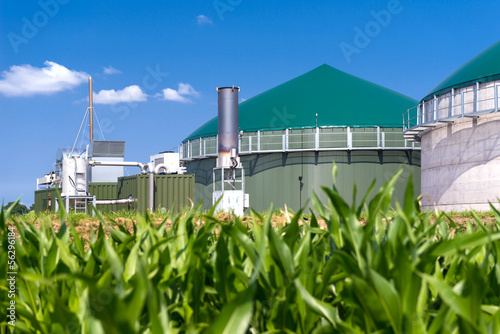 Leinwanddruck Bild Biogasanlage mit Maisfeld 3137