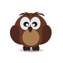 Cute Owl on white background