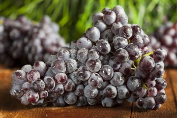 Organic Purple Wine Grapes
