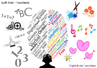 Left and Right brain function illustration